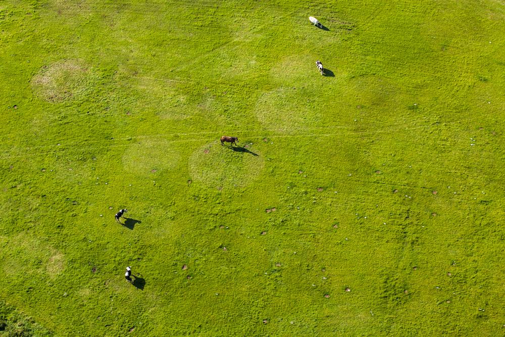 Zdjęcia z Lotu Ptaka dla LOT Serce Kaszub
